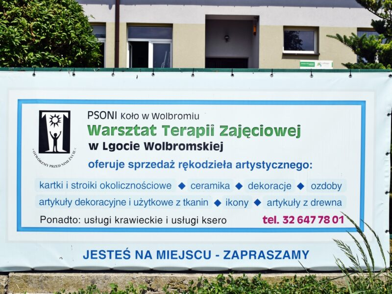 https://psoni-wolbrom.pl/wp-content/uploads/2021/09/DSC_1799-800x600.jpg